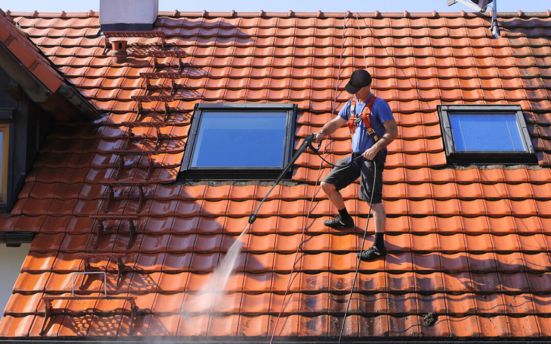 5 Things to Consider Before Hiring a Professional Roof Cleaning